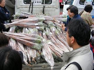 超ロングにんじん収穫祭