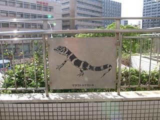 マダラトカゲモドキの看板。でかい。あとふつうなかなかこういう動物フィーチャーしない。