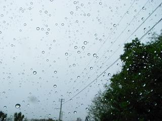 雨粒すらでかい気がするのだ。