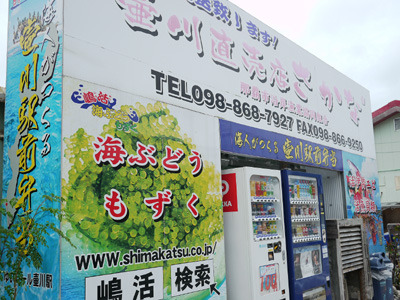 壷川直売店さかなさん。さかなさんって言葉に違和感が。