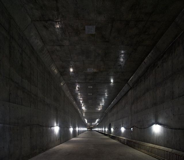 横へくぐり抜けた先には、こんなすてきな出来たてほやほやトンネルが!