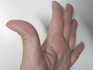 指が弓のように反る人は、「要領がよく周囲になじみやすいが、飽きやすい」こういうのも手相の一つ。