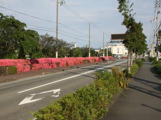 翌日からは、松山方面に向け国道56線沿いを北上していく