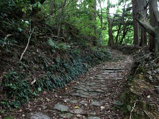 柏坂峠の遍路道。登山はキツイけど、国道のアスファルトを歩くより何倍も楽しい