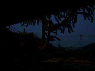 日が沈むと、蚊もたくさん集まってきた