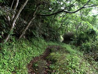 三坂峠を下って松山に入ると――