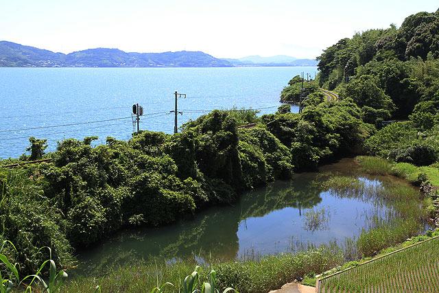 海と池(?)の間の草がもこもこしてるところを列車が通る。