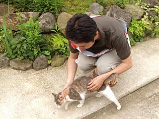 このタスキをしていると、猫も愛想がいい気がする。