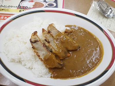 普通のカレーはご飯にかける。これは食べやすい