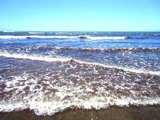 ぬおー、やっぱり水にさわりたい! と、足首まで海水浴。
