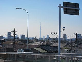 浦安(千葉の端)と葛西(東京の端)を結ぶ橋の上からでも見える。