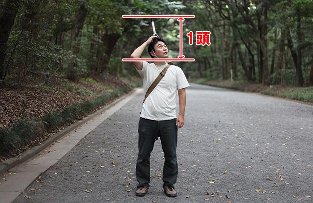 頭の上を拡張したせいで、頭の長さがエライ事に。