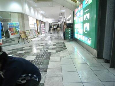 例えばこんな美しく舗装された床にはアドベンチャーのかけらもないが