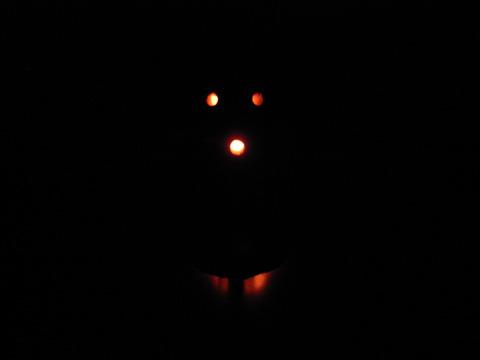 と思って点灯してみたけど、いかんせん開口部が小さいのでこんな感じ。