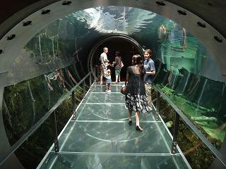 アマゾン川水中トンネル
