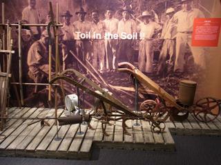農耕の道具なども展示