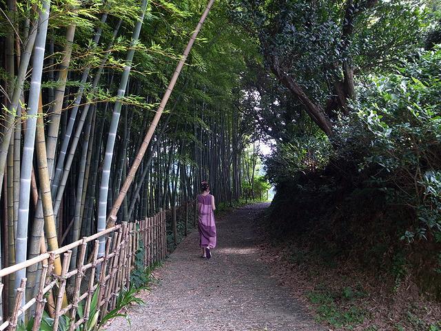 竹林がきれいに手入れされている。ずっと人の気配がしないけど、すごくかっこいい道。