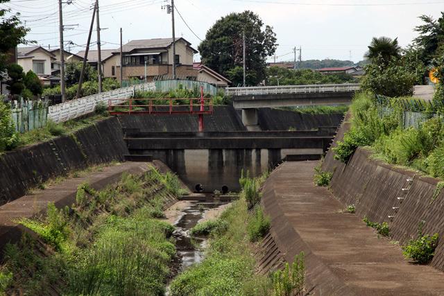 川を塞ぐこれはダムか