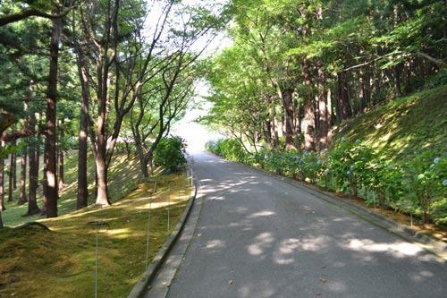 静かな木陰の道をすすむと……