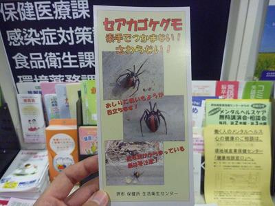 市役所内で配布されていたセアカゴケグモ対策リーフレット。