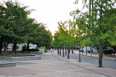 公園!天気いい!気持ちいい!!