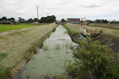 この水路の突き当りが利根川の堤防