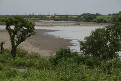 多分、利根川やその河川敷が広すぎるせいかな