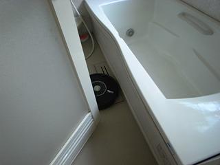 夜帰ると風呂場でドアに挟まってもがいていたりする。かわいい。