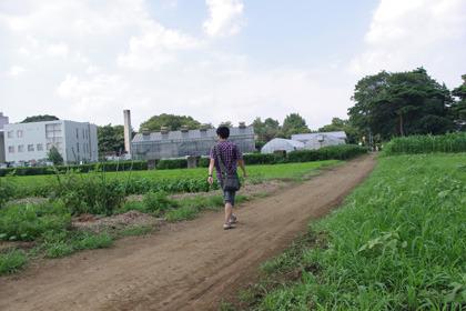 農場の散歩も楽しめます。