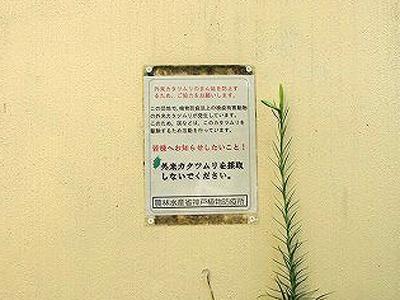 張り紙に「外来カタツムリを採取しないでください」の文字。エスカルゴのことだ。