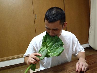 丸かじりケール。ライターのほそいさんは「単独で食べる野菜はおいしいのに、汁にするとまずい。」と言っていました。