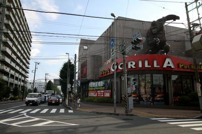 さがみ野駅からは、ここを通って綾瀬市の北東部に至る