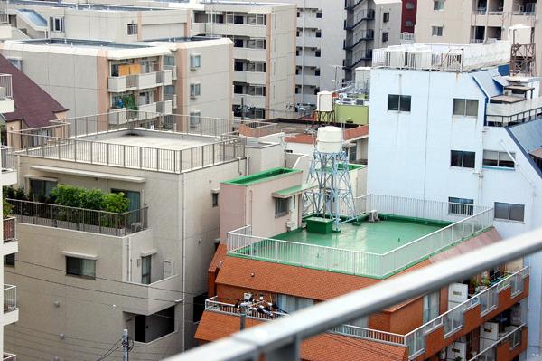 右側のマンション