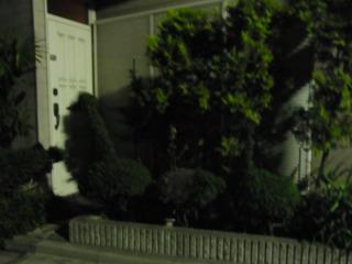 鳥に見せてる植木怖い!真ん中だけ手入れが甘くて怖い!
