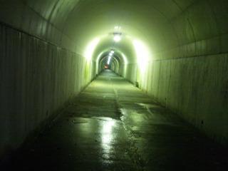 自動車専用トンネルの脇にある人用のトンネル(こわい)