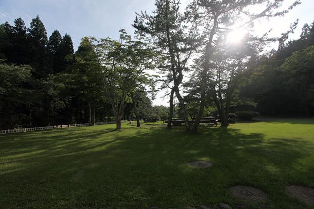 目の前の公園もステキだ