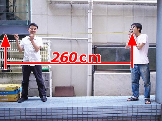 地主(260cm)