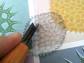 網目模様は、スジ彫りだけ施す。