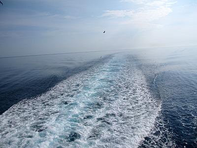 フェリーの一番後ろから見る海がおもしろかった。ゴゴゴゴー。
