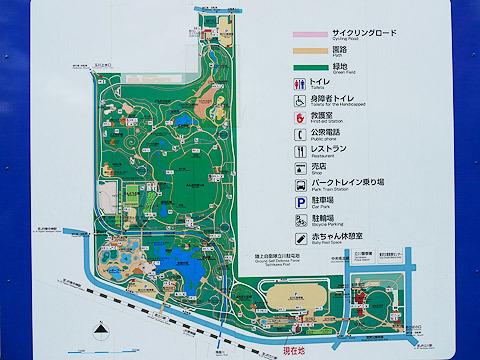 公園はとにかく広い