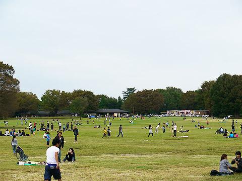 公園は曇り空だけれど、多くの人々が楽しそうに遊んでいた