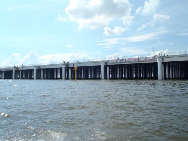 これが、橋脚たちの聖地である。桟橋の脚、なので、やや無理矢理だが橋脚に間違いない。この立ち並びっぷり。すばらしい。