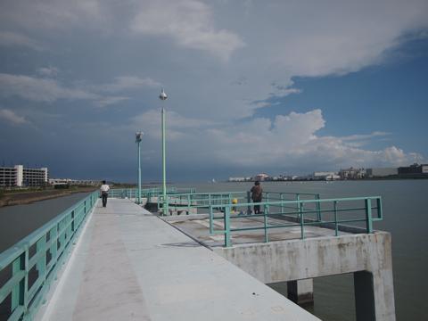 ダッシュで桟橋先端へむかう会員たち。あぶない、あぶないから。