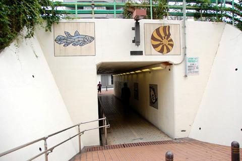 アンモナイトも泳ぐ中里第一隧道