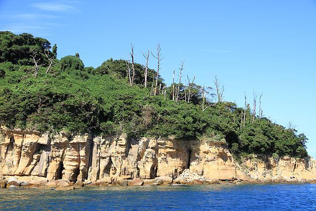 無人島を見るとつい、どうやって住むか考えてしまう。