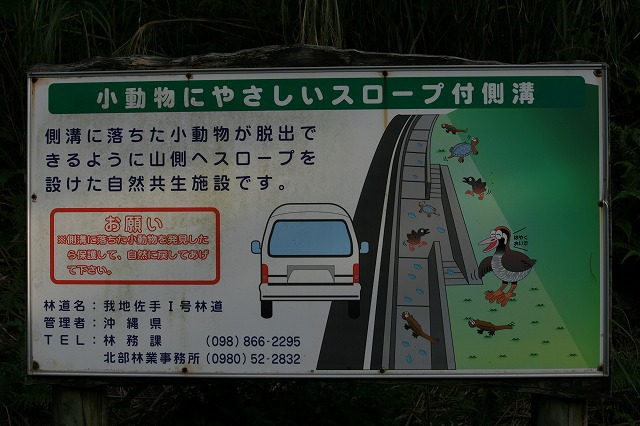 飛べないクイナやカメ、イモリなどが落ちても這い出ることができる側溝もあった。