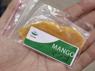 突然渡されたマンゴ。囓りながら会場を回ります。
