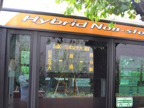 起点と終点以外バス停がない