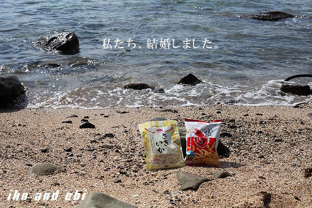 本来、イカは海老を食べるでゲソ。でもここでは便宜上イカと海老のマリアージュとしたでゲソ。これを年賀状にするでゲソ。