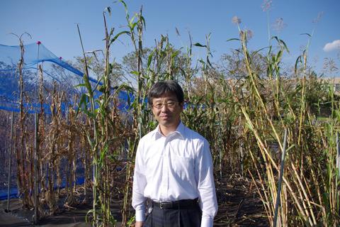 林先生。専門は作物生産システム。農学博士。
